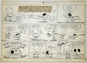 Peanuts creator Charles Schulz drew this Sunday comics page in May 1953. Done in pen and ink, the strip sold for $67,800 at Philip Weiss Auctions.Image courtesy Philip Weiss Auctions.