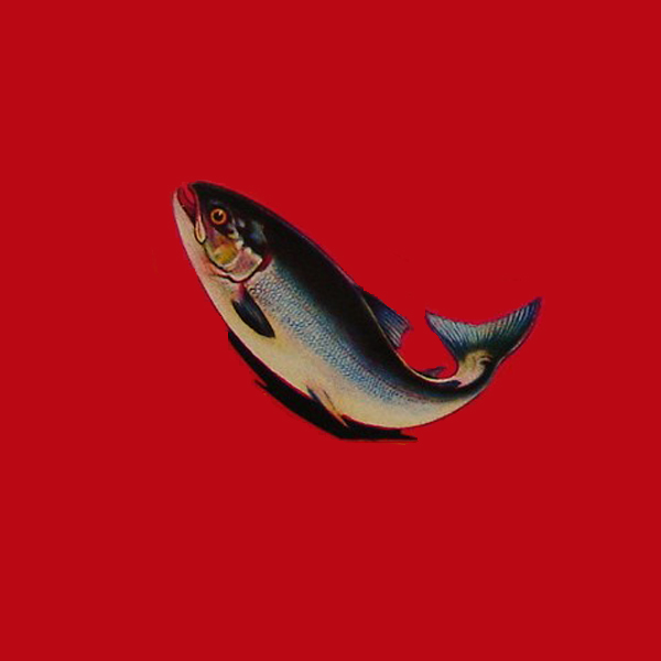 salmon labels