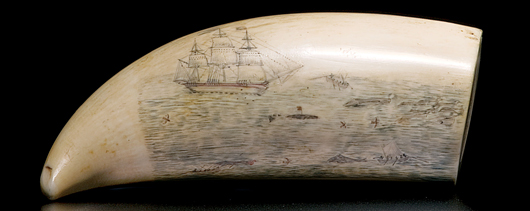 Scrimshawed whale's tooth with whaling scene and American ship