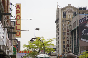 The site of the proposed National Jazz Museum is across from the Apollo Theater in Harlem, shown in this photograph. In the background, the Hotel Theresa is visible, as is Blumstein's department store, the first business along 125th Street to employ blacks as salespeople. Photo by Stern, 2006, licensed under the Creative Commons Attribution-ShareAlike 2.5 License.