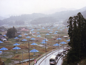 Christo and Jean-Claude's 1991 Umbrella Project in Japan. Image by Dddeco, courtesy Wikimedia Commons, Creative Commons Attribution Share-Alike 3.0 License.