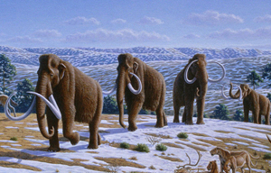 Re-creation of woolly mammoths in a late Pleistocene landscape in northern Spain. Artwork by Mauricio Anton. © 2008 Public Library of Science, licensed under Creative Commons Attribution 2.5 license.
