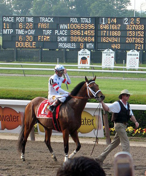 Carolyn Dekker photo of Big Brown and jockey Kent Dersoumeaux as they headed for the starting gate at the June 7, 2008 Belmont Stakes.