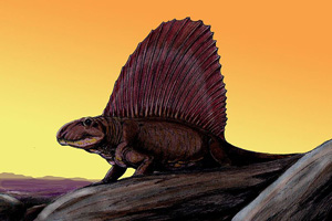 Re-creation of a Dimetrodon at sunrise, by Dmitry Bogdanov. Licensed under the Creative commons Attribution 3.0 Unported license.