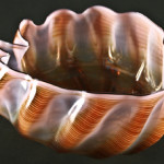 Dale Chihuly, (American, b. 1941), 'Untitled (Seaform Series),' 1983, hand blown glass, 6 1/4 x 10 x 9 1/2 inches (object). Estimate: $3,000-$5,000.