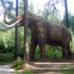 Life-size model of a mammoth, or mastodon. Image courtesy of Wikimedia Commons.
