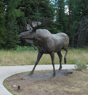 Titled 'September,' this bronze sculpture of a mature bull moose by American artist Michael Coleman now surveys Grand Teton National Park, thanks to a generous private donation. Image courtesy of Grand Teton National Park Foundation.