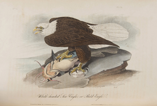 'White-headed sea eagle or bald eagle,' one of 500 illustrations contained in a complete 1840 octavo edition of John James Audubon's 'The Birds of America,' est. $40,000-$60,000. Image courtesy of Waverly's Rare Books.