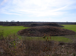 Three of the Kincaid mounds in Massac Co. Ill. Image by Herb Roe. This file is licensed under the Creative Commons Attribution-Share Alike 3.0 Unported, 2.5 Generic, 2.0 Generic and 1.0 Generic license.