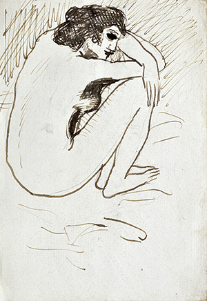 This impressive pen and ink drawing by Pablo Picasso titled 'Nue Accroupi' will be offered for $50,000 to $70,000. Clars Auction Gallery image.