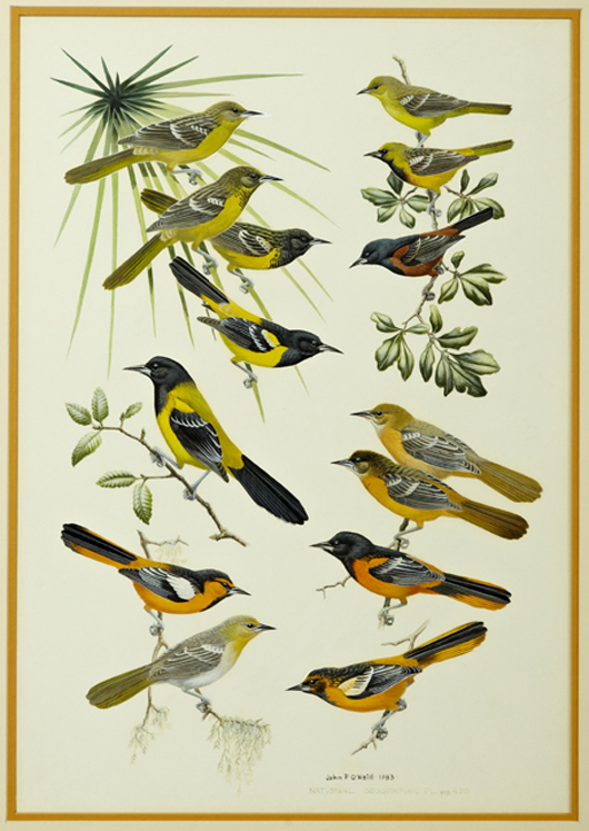 Gouache rendering of 'Birds of North America' by John P. O'Neill (b. 1942), signed by the artist. Crescent City Auction Gallery image.