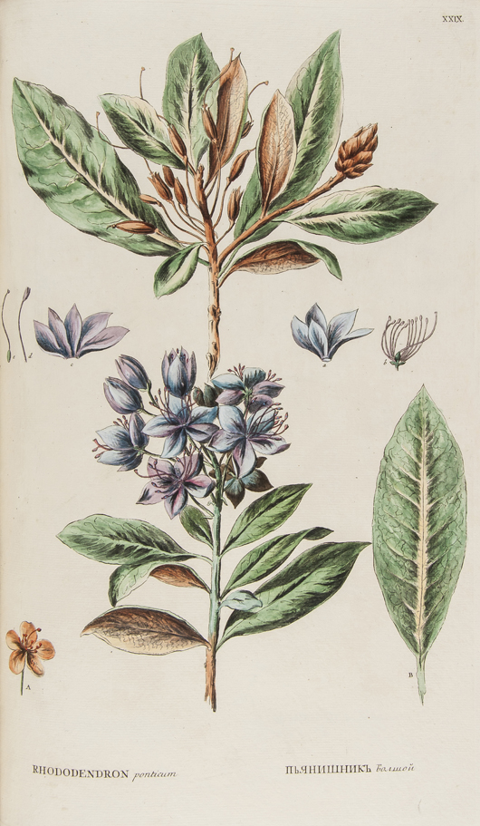 Pallas (Peter Simon),  'Flora Rossica …, ' two parts in one volume, first edition, the first great illustrated Russian flora, St. Petersburg, 1784-88. Estimate: £6,000-8,000. Bloomsbury Auctions image.