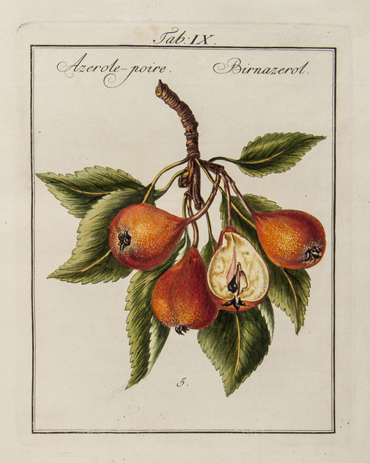 Mayer (Johann Prokop), 'Pomona Franconica,' volume 1 & 2 only (of 3), first edition, rare work on the fruit gardens of the Palace of Würzburg, Nuremberg, 1776-79. Estimate: £8,000-10,000. Bloomsbury Auctions image.