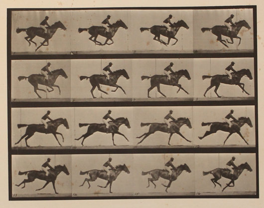 Plate from Eadward Muybridge's Animal Locomotion: An Electro-Photographic Investigation of Consecutive Phases of Animal Movements, 1872-1885, 11 vol. Author's Edition folio. Est. $12,000-$15,000. Waverly Rare Books image.