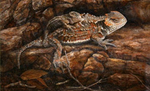 Wyoming Announces 2014 Conservation Stamp Art Contest