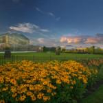 View of Frederik Meijer Gardens & Sculpture Park. Photo by William J. Hebert.