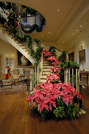 Montmorenci Stair Hall at Winterthur, elegantly decked out for the holidays with garlands, poinsettias and other Christmas decorations. Image courtesy of Winterthur.