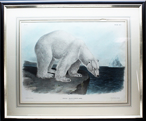 'Polar Bear – Male,' after J.W. Audubon, color lithograph finished by hand and printed by J.T. Bowen, Philadelphia, 1846. Plate XCL from 'The Vivaparous Quadrupeds of North America, N.Y., 1845-54. Estimate $1,500-$2,000. Waverly Rare Books image.
