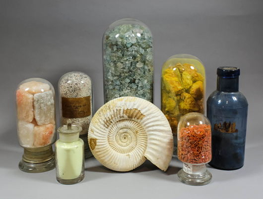 Minerals and fossils from the Gregory, Bottley and Lloyd business, the contents of which will be dispersed by Canterbury Auction Galleries in June. Image Auction Central News.