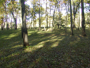 Woodland conical mounds at Effigy Mounds National Monument in Clayton County, Iowa. Image by Billwittaker. This file is licensed under the Creative Commons Attribution-ShareAlike 3.0 Unported License.