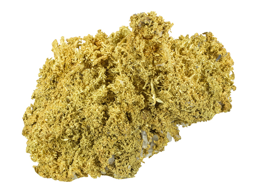 Gold specimen, Belshazzar Mine, Boise County, Idaho; 24.56 oz total weight / 19.35 oz pure gold content, ex Farnham collection. Est. $80,000-$110,000. Morphy Auctions image