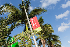 Blue skies and palm trees greeted guests at Art Basel in Miami Beach. Image copyright Art Basel