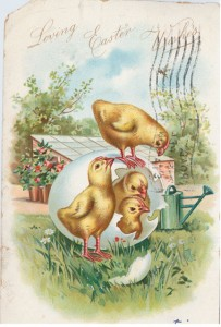 From the delicately colored chicks to the flowering shrubs in the background, this German-printed Raphael Tuck & Sons card depicts a lush vision of springtime. It's postmarked March 28, 1907, Broad Street Station, Philadelphia. Karen Knapstein image, courtesy of Antique Trader