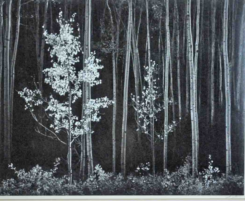 Ansel Adams 'Aspens, Northern New Mexico, 1958.' Hammer price: $22,000. Leighton Galleries image