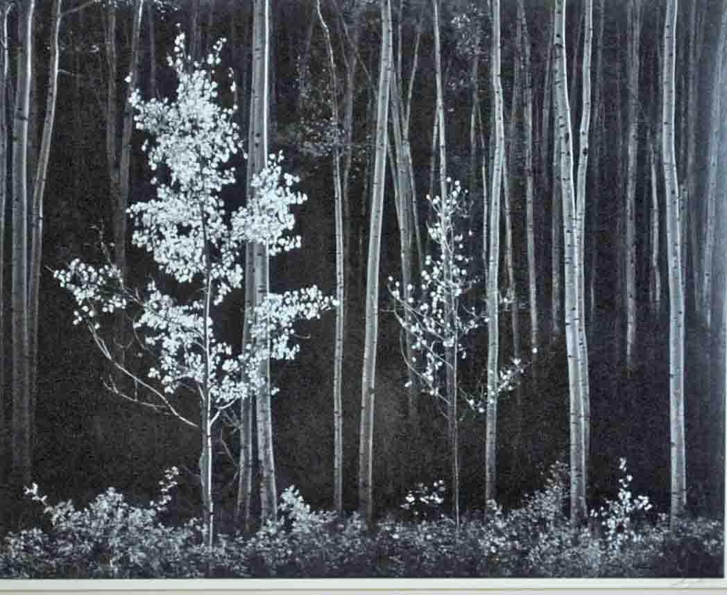 Trio of Ansel Adams photos top $87,000 at Leighton Galleries