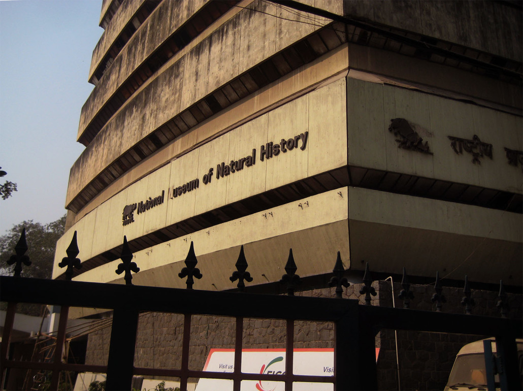 India's National Museum of Natural History in a photo taken prior to the fire. Image by Craig Deitrich. This file is licensed under the Creative Commons Attribution 2.0 Generic license.