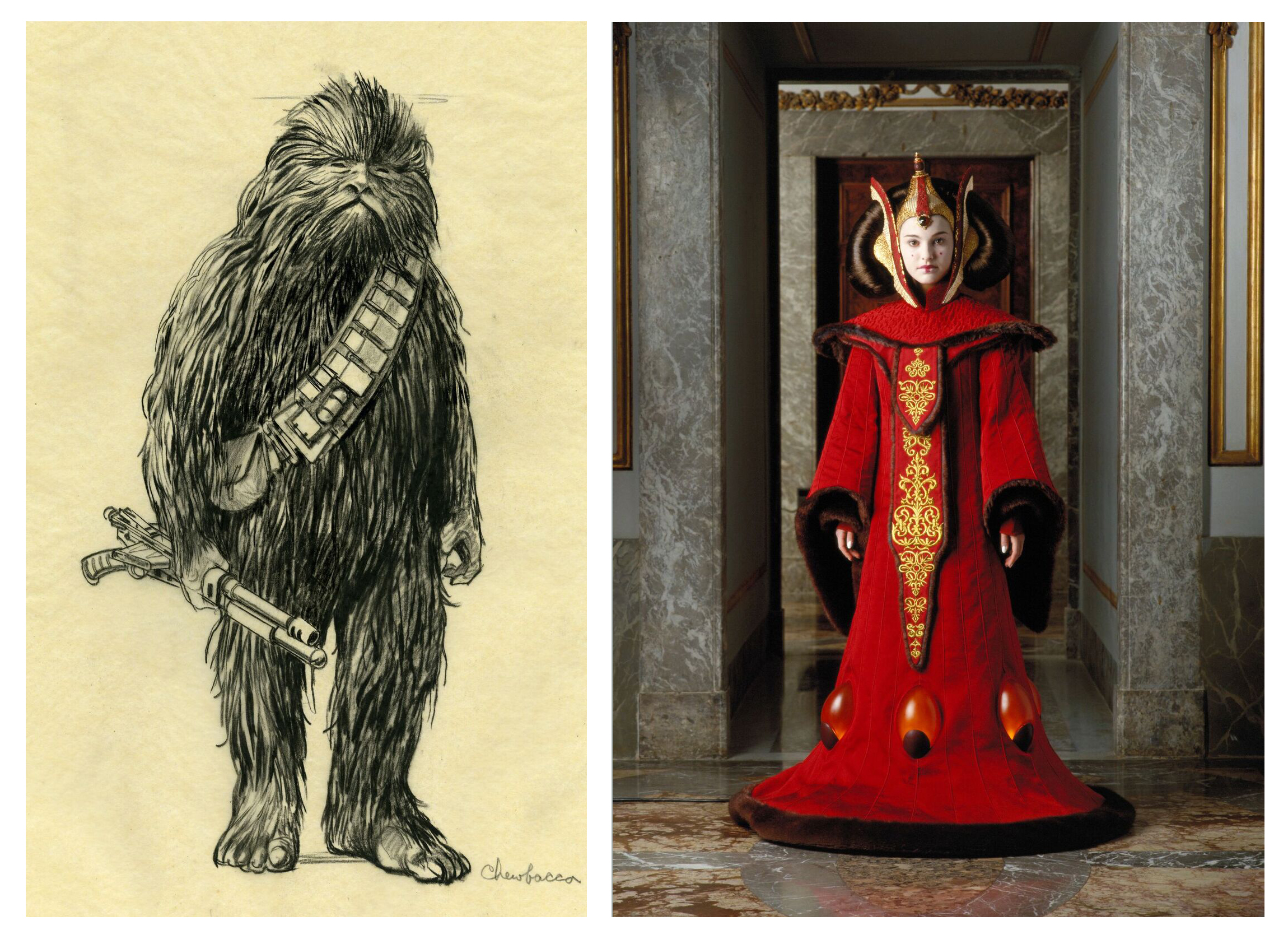 Attractive Star Wars Costumes In Denver, Auction Of 10 Commandments Stone, And More  Fresh News