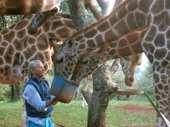 In Memoriam: wildlife photographer Peter Beard, 82