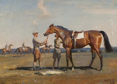 Horse portraits: odds-on favorites