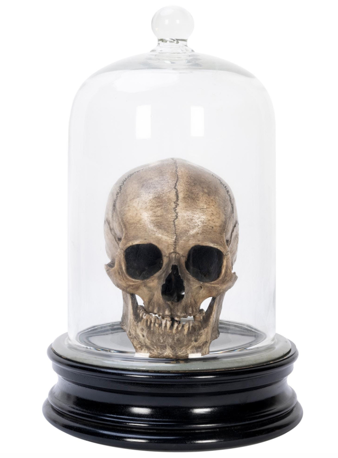 1920s-era animated skull made in Vienna by S. Klingl, estimated at $4,000-$8,000