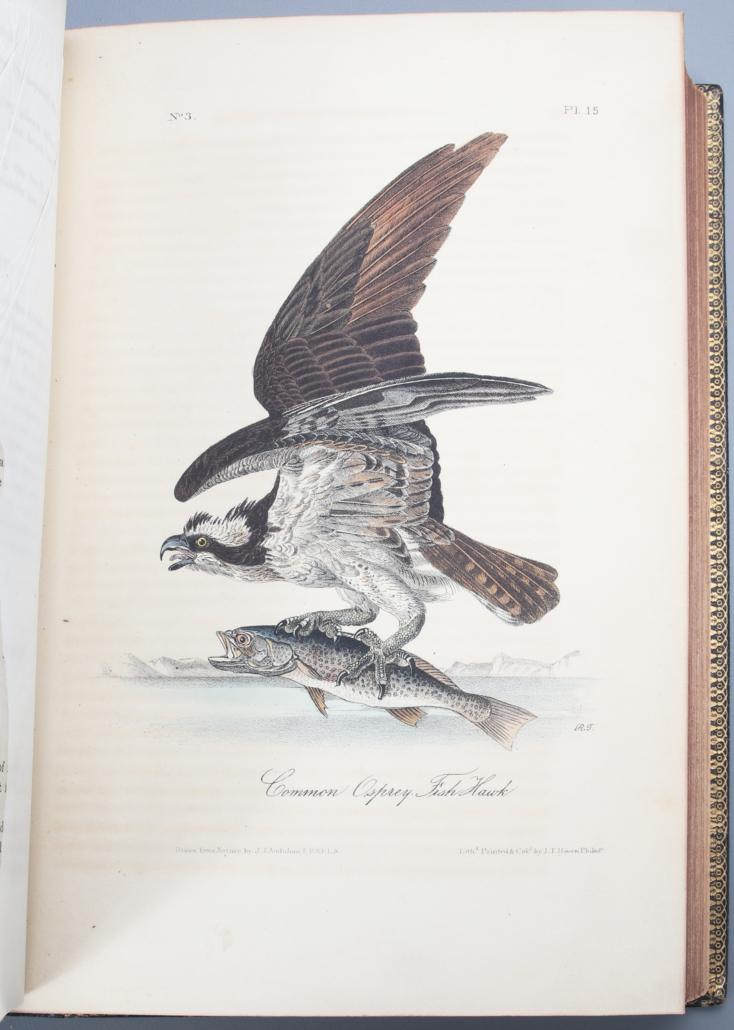 John James Audubon, 'Birds of America,' first royal octavo edition, $150,000-$250,000