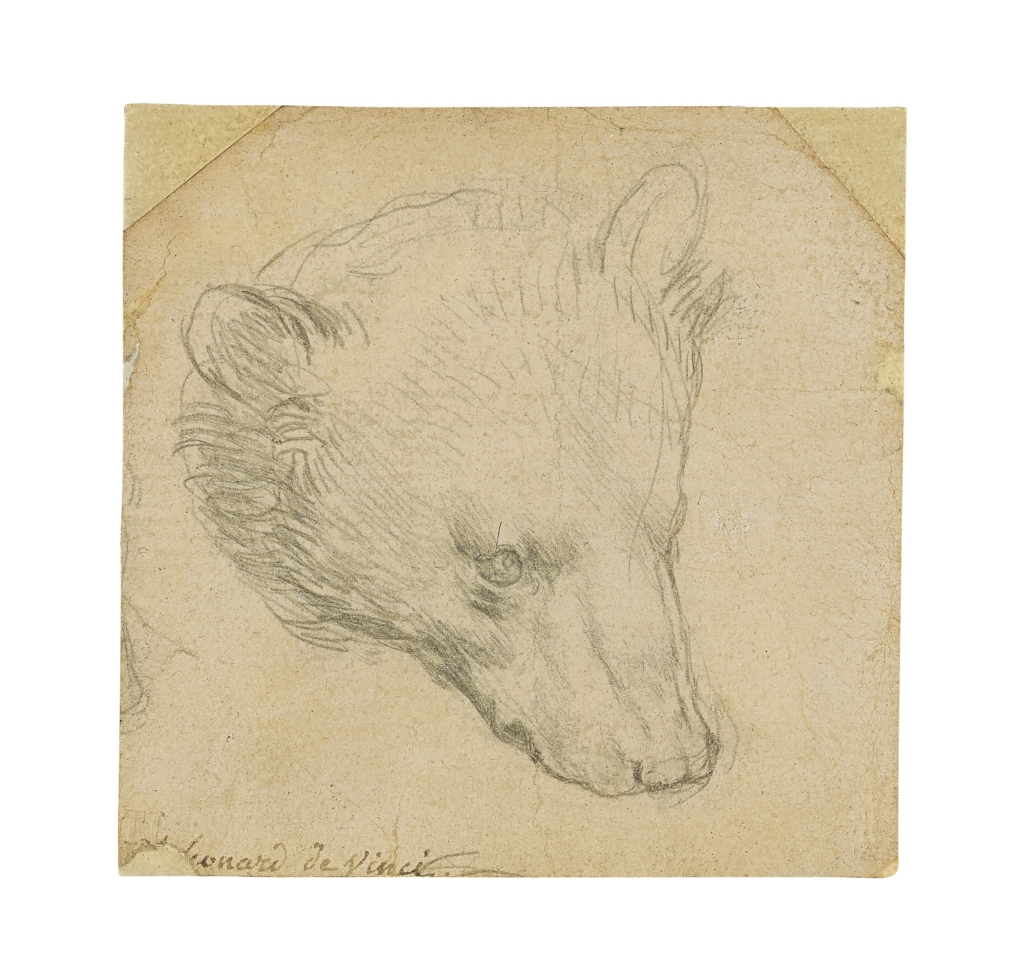 Leonardo da Vinci, 'Head of a Bear,' which sold for $12,196,778 and a new world auction record for a drawing by the artist. Image courtesy of Christie's Images Ltd 2021