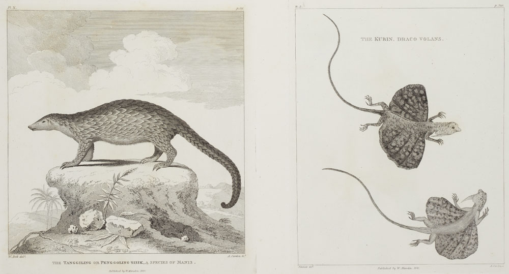 William Marsden, 'History of Sumatra,' estimated at €4,500-€9,000