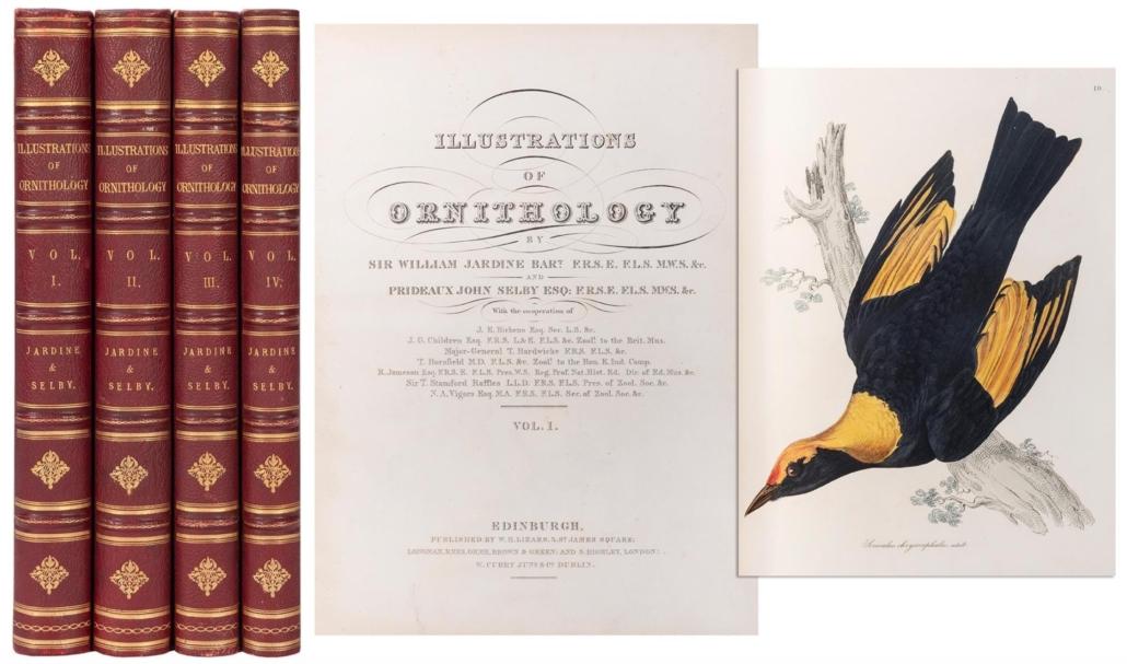 Four-volume Illustrations of Ornithology, $15,600