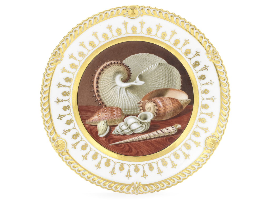 Chamberlain cabinet plate featuring the Precious Wentletrap shell, est. £10,000-£15,000. Image courtesy of Bonhams